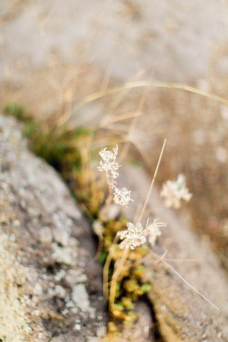 clementin-photo-scent-of-sardinia-wedding-shooting-242